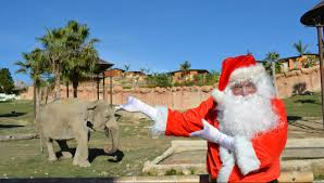 Santa Claus in Benidorm